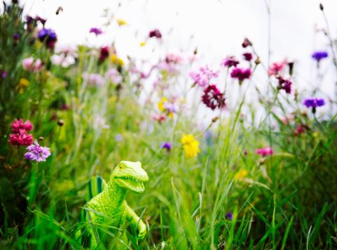 newoutdoors「toy dinosaur in garden with flowers」:スマホ壁紙(9)