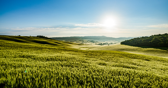 Agricultural Field「Sunrise in Tuscany, Siena Province, Italy」:スマホ壁紙(12)