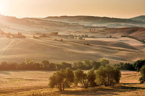 Grove「Sunrise in Tuscany」:スマホ壁紙(17)