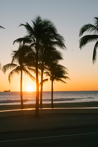 Miami「Sunrise in Fort Lauderdale, Florida」:スマホ壁紙(6)
