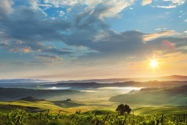 Sunrise in Tuscany, location: Crete Senesi:スマホ壁紙(壁紙.com)