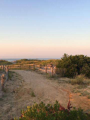 ニュージャージー州 ジャージー・ショア「Sunrise in Ocean City New Jersey」:スマホ壁紙(3)