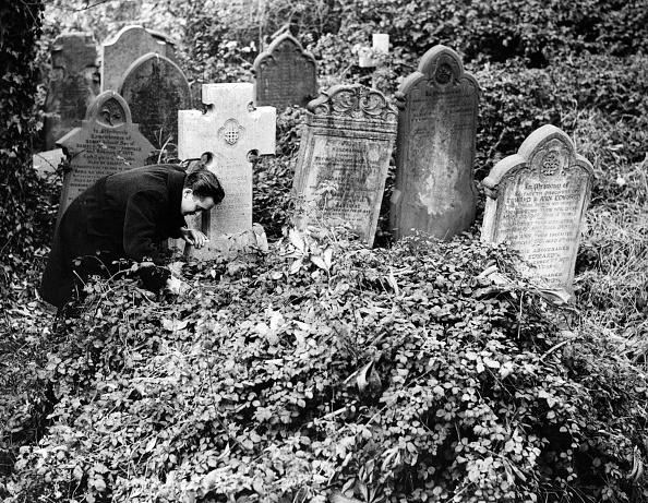Run-Down「Dilapidated Graves」:写真・画像(14)[壁紙.com]