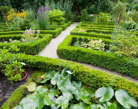 Amsterdam「Formal Gardens」:スマホ壁紙(11)