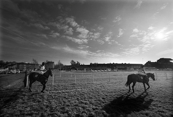 Mammal「National Hunt Horse Racing at Warwick Race Course 1998」:写真・画像(13)[壁紙.com]