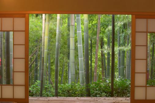 Kyoto Prefecture「Bamboo as viewed through tea house windows, Kyoto, Honshu, Japan」:スマホ壁紙(13)