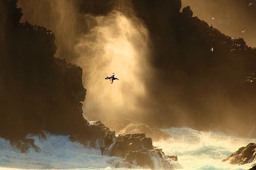 ガラパゴス諸島「Galapagos Landscape」:スマホ壁紙(5)