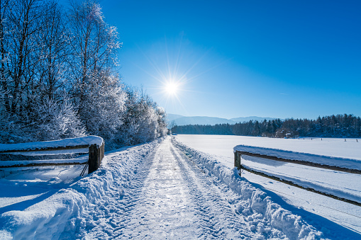 January「4 Seasons - sunny winter day outdoors in rural landscape」:スマホ壁紙(6)