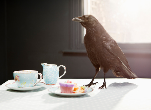 Fairy Tale「Crow standing on table with cupcake.」:スマホ壁紙(1)