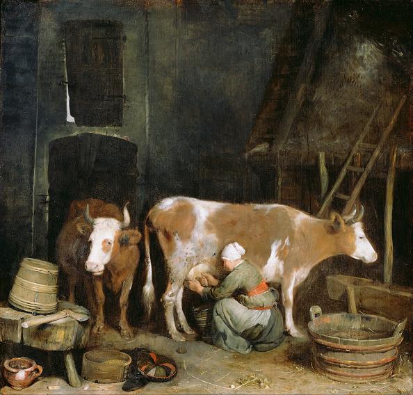 animal「A Maid Milking A Cow In A Barn」:写真・画像(11)[壁紙.com]