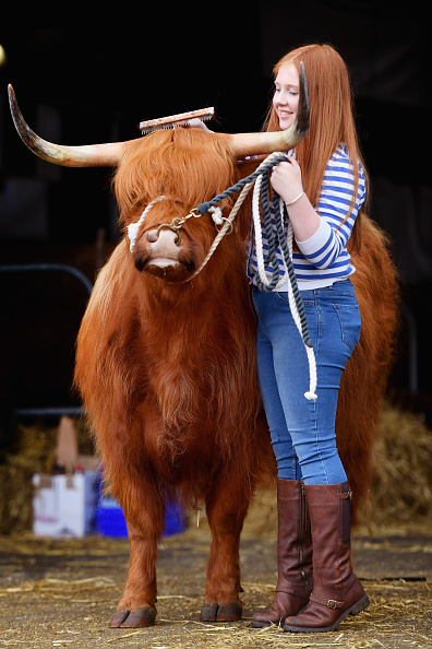 見せる「Preparations Are Made For The Royal Highland Show」:写真・画像(13)[壁紙.com]