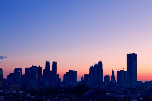 Dawn「Tokyo Metropolitan Government Building and Shinjuku Skyline at Dawn」:スマホ壁紙(9)