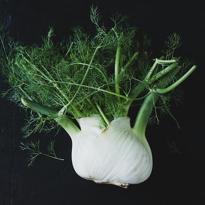 Fennel「fresh fennel on black background.」:スマホ壁紙(8)