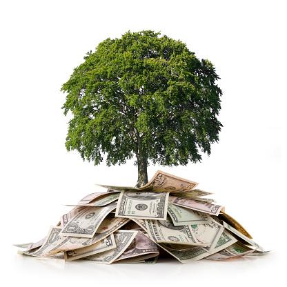 経済「投資と環境です。木の上を大幅に節約できます。」:スマホ壁紙(19)