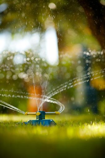 Sprinkler「annaffiatore」:スマホ壁紙(3)