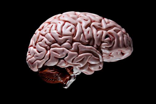 Sadness「The Brain」:スマホ壁紙(13)