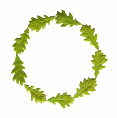 Continuity「Circle created using seven green leaves, on white background」:スマホ壁紙(15)