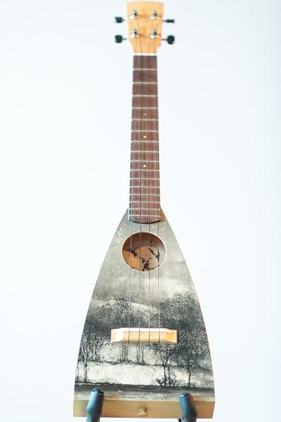 楽器「Decorated Instruments Belonging To The Ukulele Orchestra of Great Britain Are Displayed Ahead Of Charity Concert」:写真・画像(2)[壁紙.com]