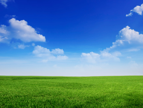 Cloud - Sky「sky and grass backround」:スマホ壁紙(2)