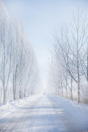雪の結晶「Rural road in winter」:スマホ壁紙(0)