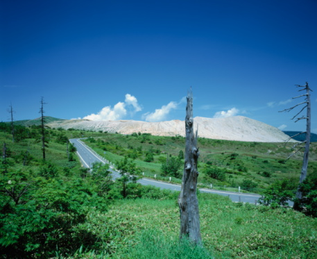 Japan「Rural road surrounded by tree trunks, Gumma Prefecture, Japan」:スマホ壁紙(10)