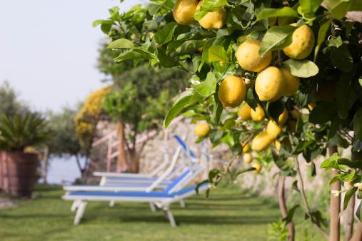 Deck Chair「Amalfi Coast in Campania, Italy」:スマホ壁紙(2)