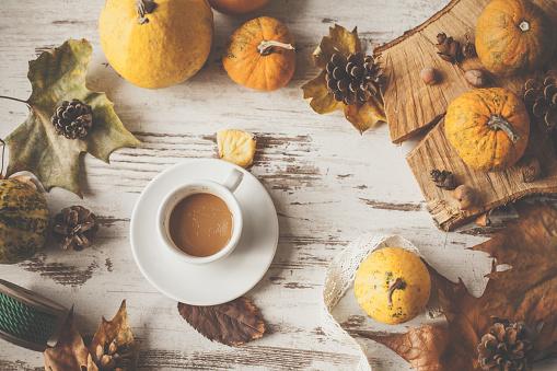 Chestnut「Cozy autumnal arrangement」:スマホ壁紙(16)