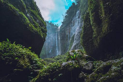 Active Volcano「Inside the canyon of the Tumpak Sewu waterfall on Java Indonesia」:スマホ壁紙(17)