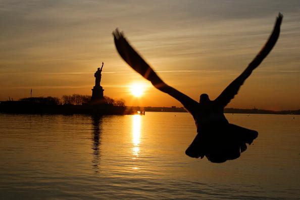 Aquatic Organism「Statue Of Liberty Closed Due To Government Shutdown」:写真・画像(0)[壁紙.com]