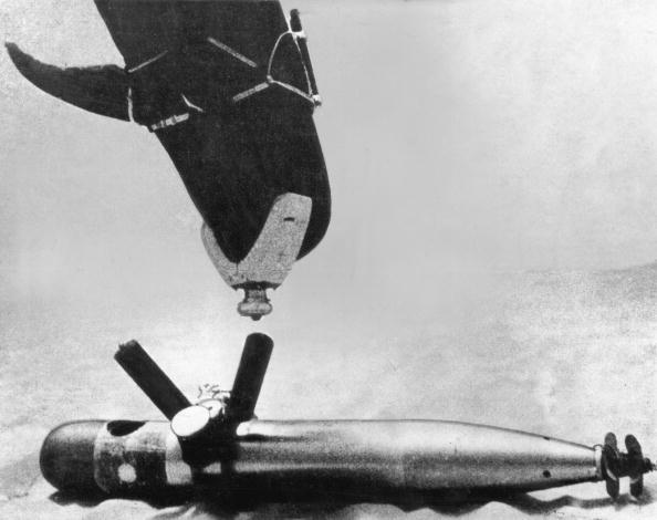 Navy「Navy Dolphin」:写真・画像(8)[壁紙.com]