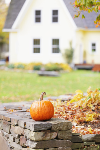 Gourd「Pumpkin on Rock Wall and Rustic Yellow House」:スマホ壁紙(18)