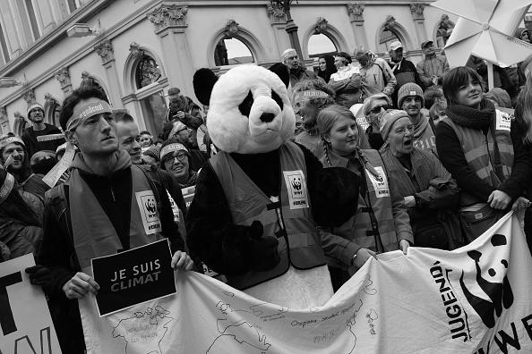 World Wildlife Fund「COP 23 UN Climate Change Conference: An Alternative View」:写真・画像(12)[壁紙.com]