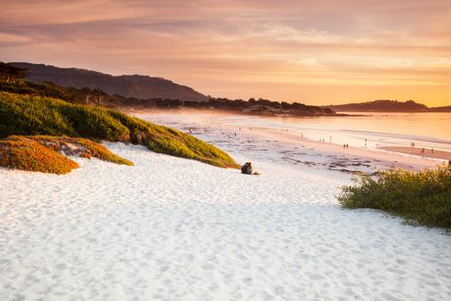 Carmel - California「Carmel Beach in Carmel-by-the-Sea」:スマホ壁紙(15)