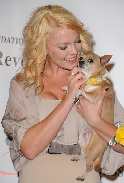 Katherine Heigl「Jason Debus Heigl Foundation's Compassion Revolution Press Conference」:写真・画像(3)[壁紙.com]