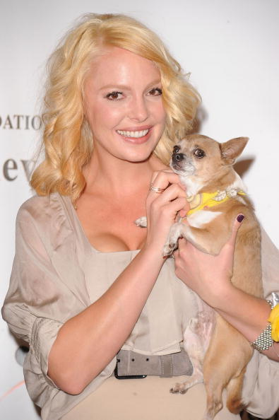 Katherine Heigl「Jason Debus Heigl Foundation's Compassion Revolution Press Conference」:写真・画像(11)[壁紙.com]