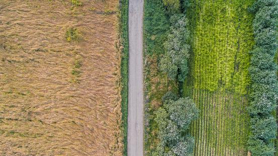 Farm「Top view of farmland, Eastern Iceland」:スマホ壁紙(16)
