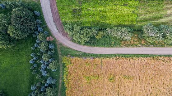 North Iceland「Top view of farmland, Eastern Iceland」:スマホ壁紙(10)