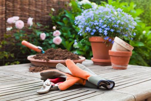 Flower Pot「Germany, Stuttgart, Gardening equipment on wooden table」:スマホ壁紙(2)