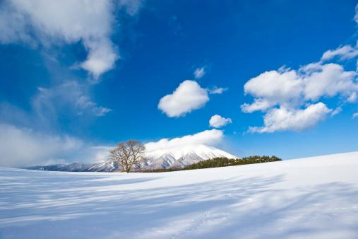 雪景色「Snow field and mountain, Iwate Prefecture, Honshu, Japan」:スマホ壁紙(4)