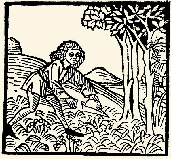 Woodcut「Neidhart Finds The First Violet. Woodcut. Melk. Manuscript. 15Th Century.」:写真・画像(1)[壁紙.com]