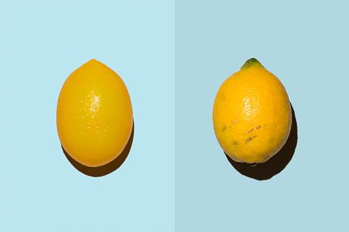 Decisions「Plastic lemon beside real lemon」:スマホ壁紙(16)