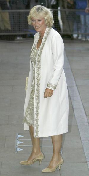 Steve Finn「Camilla Parker Bowles」:写真・画像(6)[壁紙.com]