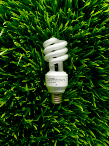 Wheatgrass「Energy saving lightbulb on wheat grass, studio shot」:スマホ壁紙(15)