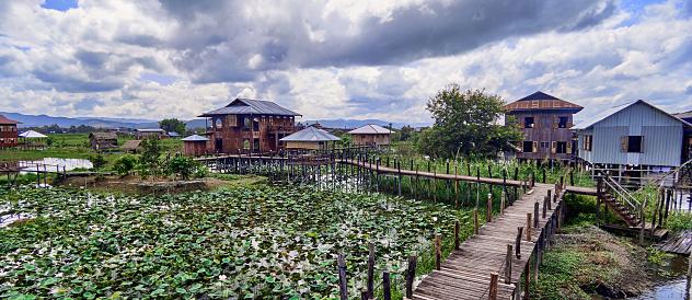 cloud「A lotus plantation in Phaw Khone」:スマホ壁紙(3)