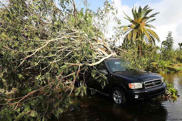 Naples - Florida「Powerful Hurricane Irma Slams Into Florida」:写真・画像(2)[壁紙.com]