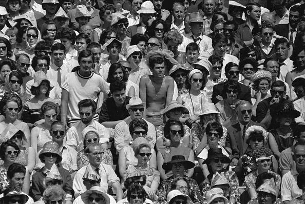 ウィンブルドン選手権の写真・画像 検索結果 [9] 画像数3,699枚