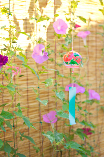 朝顔「Windchime and Morning Glory Flowers」:スマホ壁紙(2)