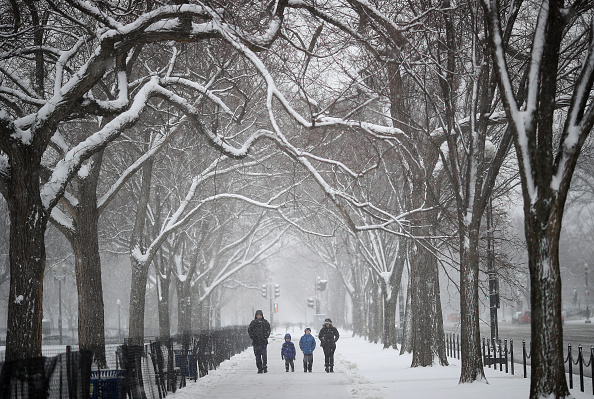 Win McNamee「Wintery Mix Of Snow, Ice, And Rain Falls In Washington D.C. Area」:写真・画像(17)[壁紙.com]
