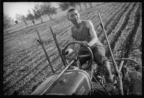 Uzbekistan「A Tractor Operator」:写真・画像(6)[壁紙.com]