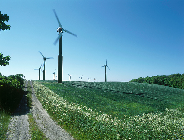 イネ科「Wind turbines.」:写真・画像(19)[壁紙.com]